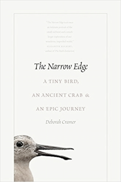 narrow edge.jpg