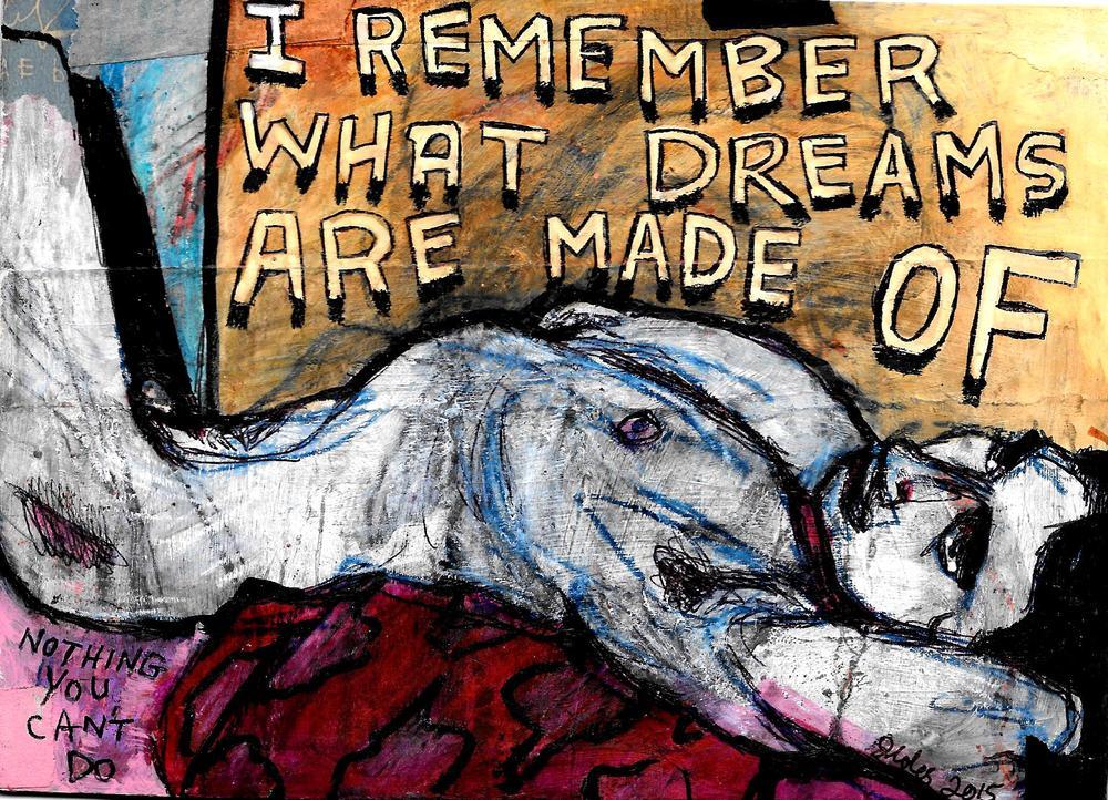 dreamer.front0003.jpg