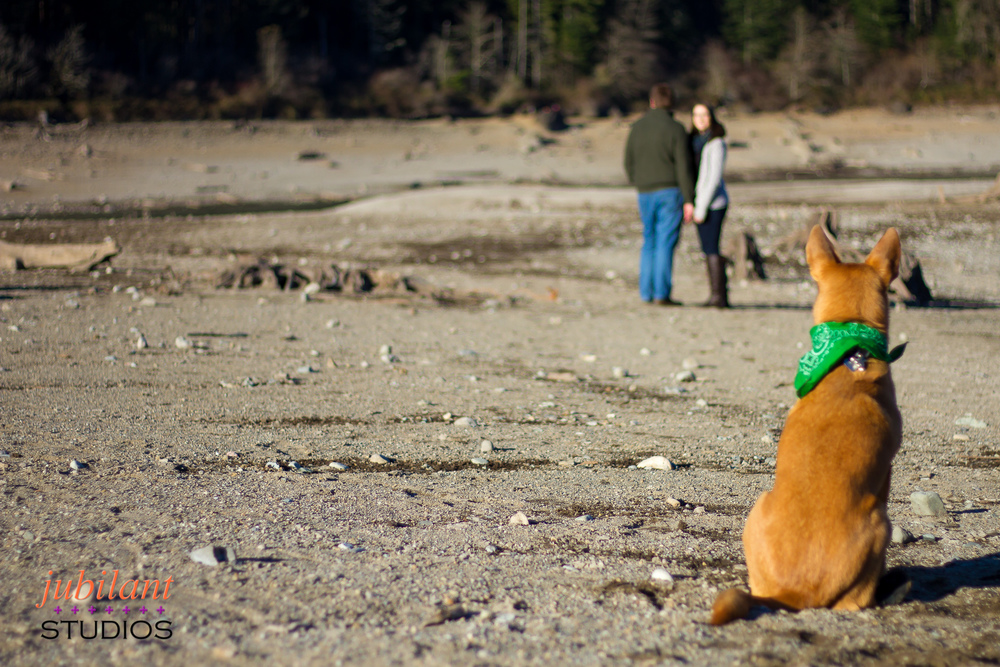 Family Photographer North Bend Dog Off Leash