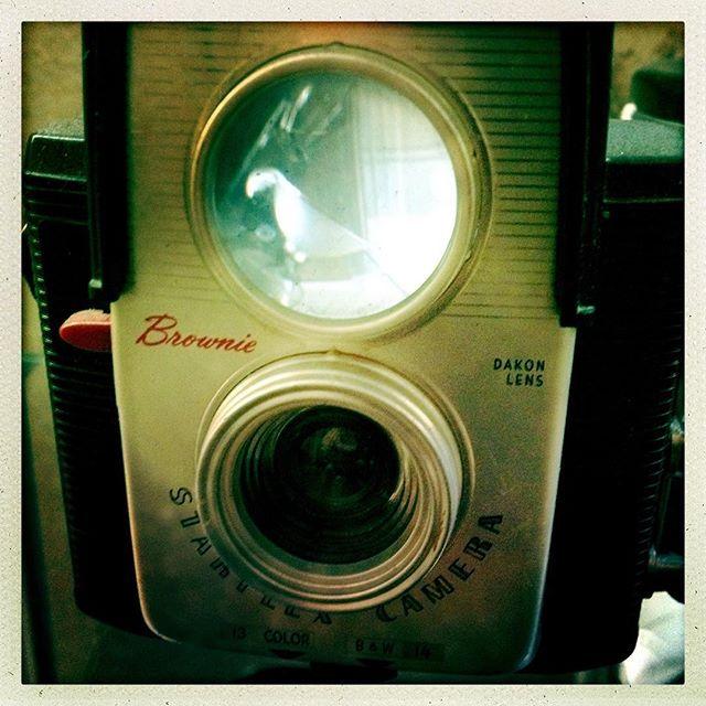 There's a bird in my Brownie. #kodak #kodakmoment #filmisnotdead #film #reflection #mirage #brownie #browniecamera #vintagecamera #oldcamera #filmcamera #oldkodak