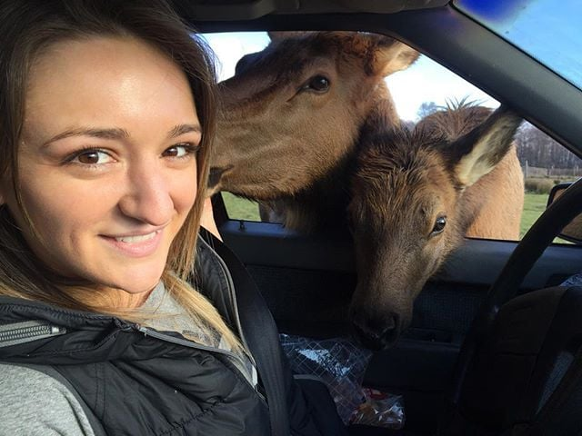 Olympic Game Farm with Baby Elks, Mandy Faddis, and a dirty Volvo 850. #olympicgamefarm #elks #petingzoo #softanimals #animalfarm #prettygirl #theculturetrip #photooftheday @mandyfaddis #mattmosher #dirtyvolvo #bread #lifeisgood