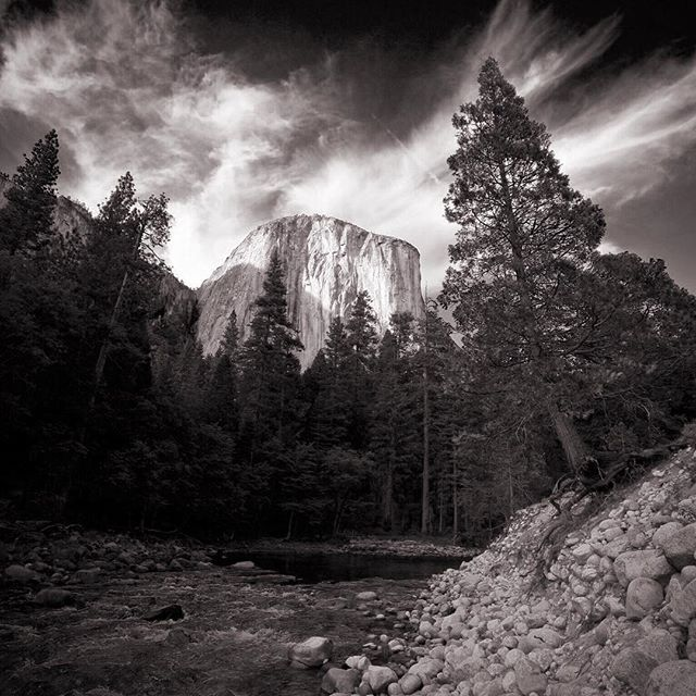 National Photography Day.#worldphotographyday #worldphotoday #nationalphotoday #nationalphotographyday  #nationalphotography #elcapitan #yosemite #yosemitenationalpark #blackandwhite #canonphoto #canonphotography #canonusa #canon_pro #canon_official @canonusa  @canon_photos
