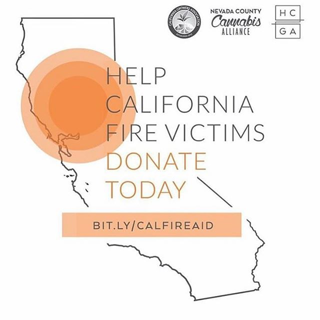 We are deeply saddened by the ongoing news from up north. Our community has experienced huge losses, and we want to be as supportive as we can in helping to support victims affected by the fires. @calgrowers has organized a donation fund online, so please take a moment if you can to make a donation to help cannabis growers who have lost their farms and livelihood. No donation is too small! Visit BIT.LY/CALFIREAID to donate, or visit the link in our profile!
