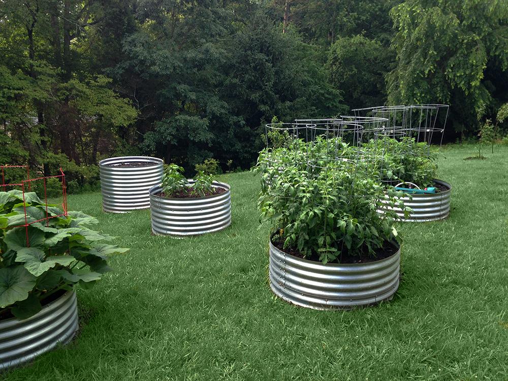 BENT CREEK RESIDENCE :  : Garden Design
