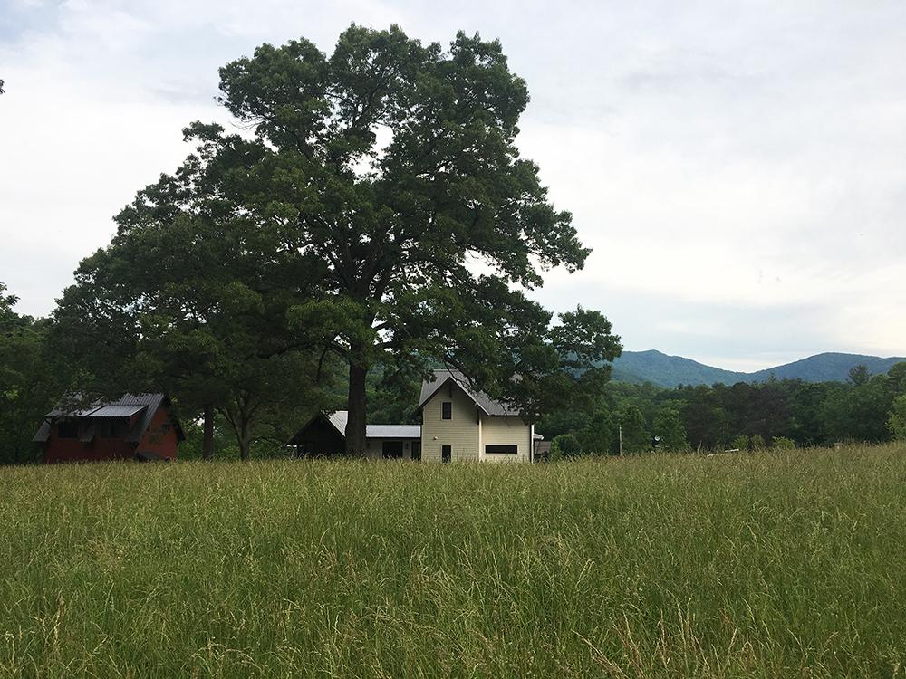SOVEREIGN OAKS   RESIDENCE :  : Site + Landscape Design