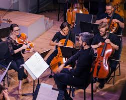 The String Orchestra of Brooklyn (Photo: NY Times)