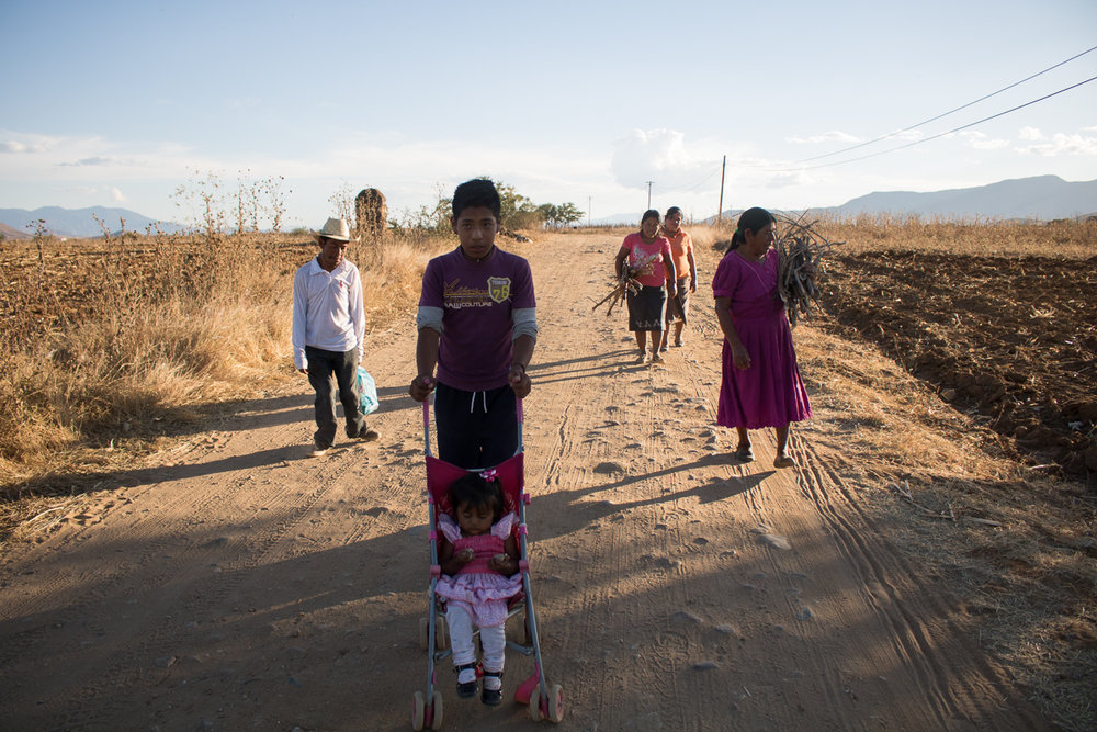 Eliseo Vargas, 35, Abdiel Vargas, 13, Ashliin Esmeralda Vargas, 2, Imelda Vargas, 34, Herminia Vargas, 32, and Auria Vargas, 63, travel down the path near their home in Zaachila, Mexico on Friday, Jan. 13, 2017.