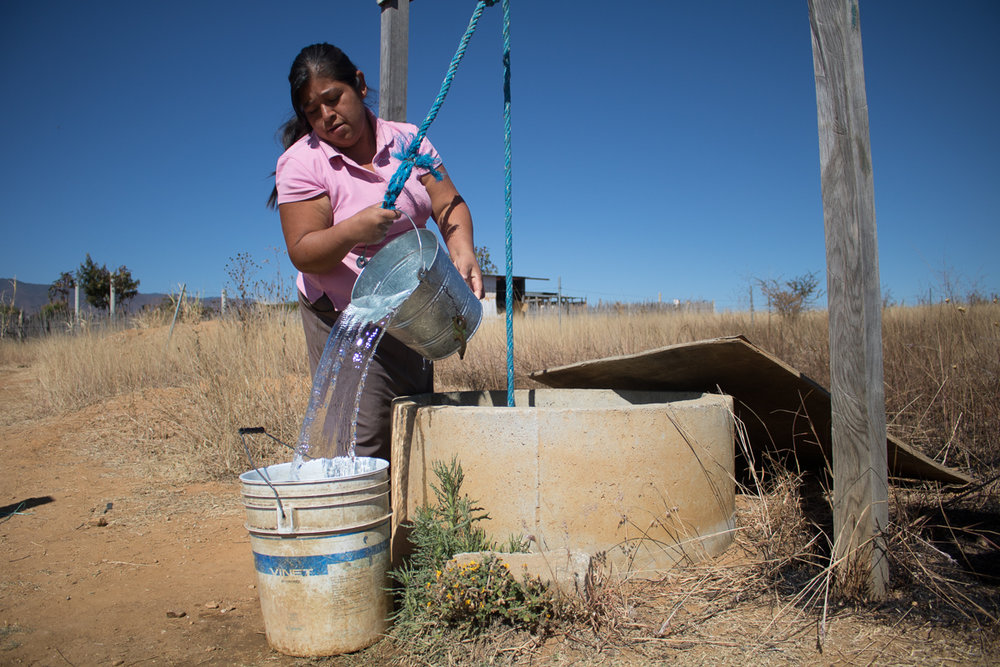 Herminia Vargas, 32, collects water from her family's well in preparation to do laundry  in Zaachila, Mexico on Tuesday, Jan. 10, 2017.