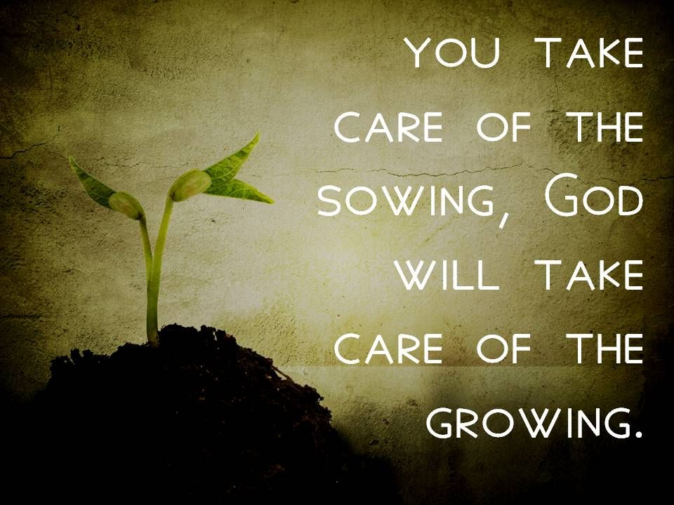 sowing God growing.jpg