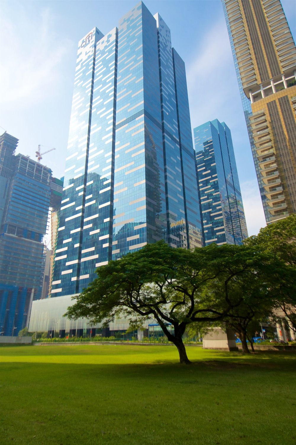 asia-square-towers-and-a-tree_29901585121_o.jpg