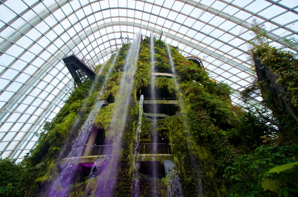 cloud-forest-at-gardens-by-the-bay_29871385102_o.jpg