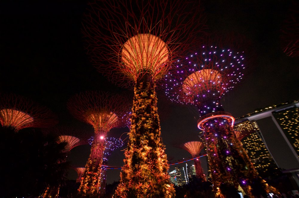 illuminated-supertrees-at-the-gardens-by-the-bay_29871416502_o.jpg
