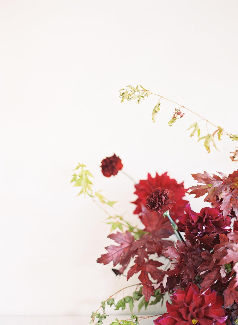 Lilli Kad Photography -6.jpg
