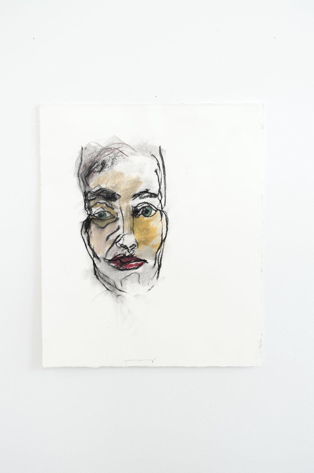 Donald Head 1   Pastel  2016