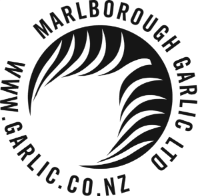 Marlborough Garlic