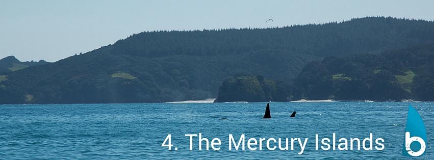 mercuryislandswhitianga