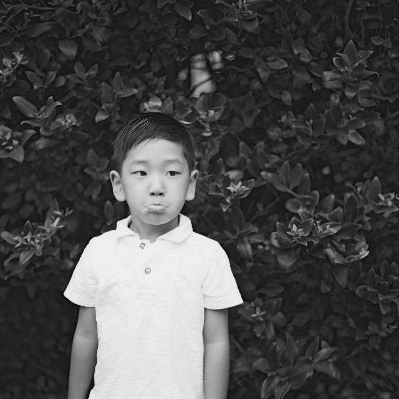 ©Joyce C. Kang-DDKang001017-R2-E019002