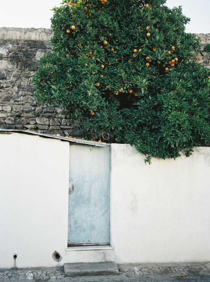 Michelle Lemay: Portugal, Little Bellows