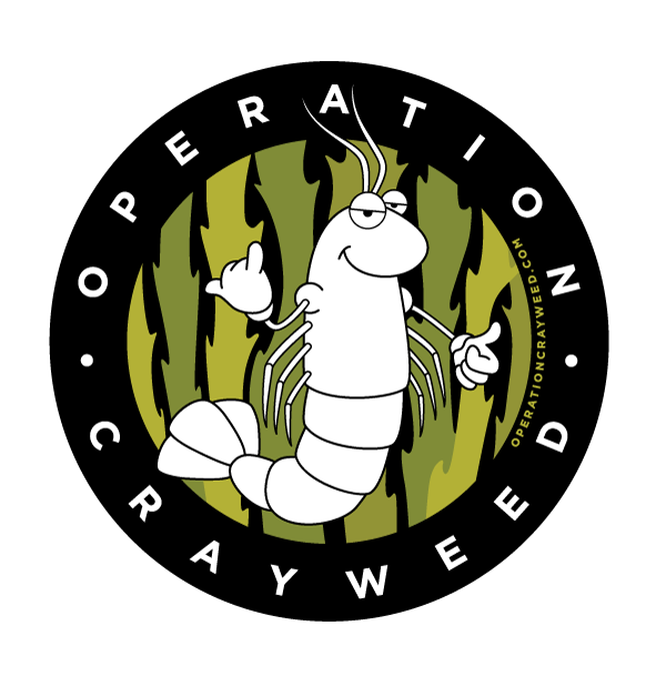 THE CRAYWEED PROJECT