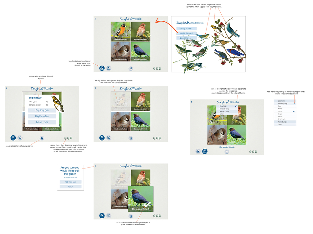 Wireframes for Songbirds for iPad