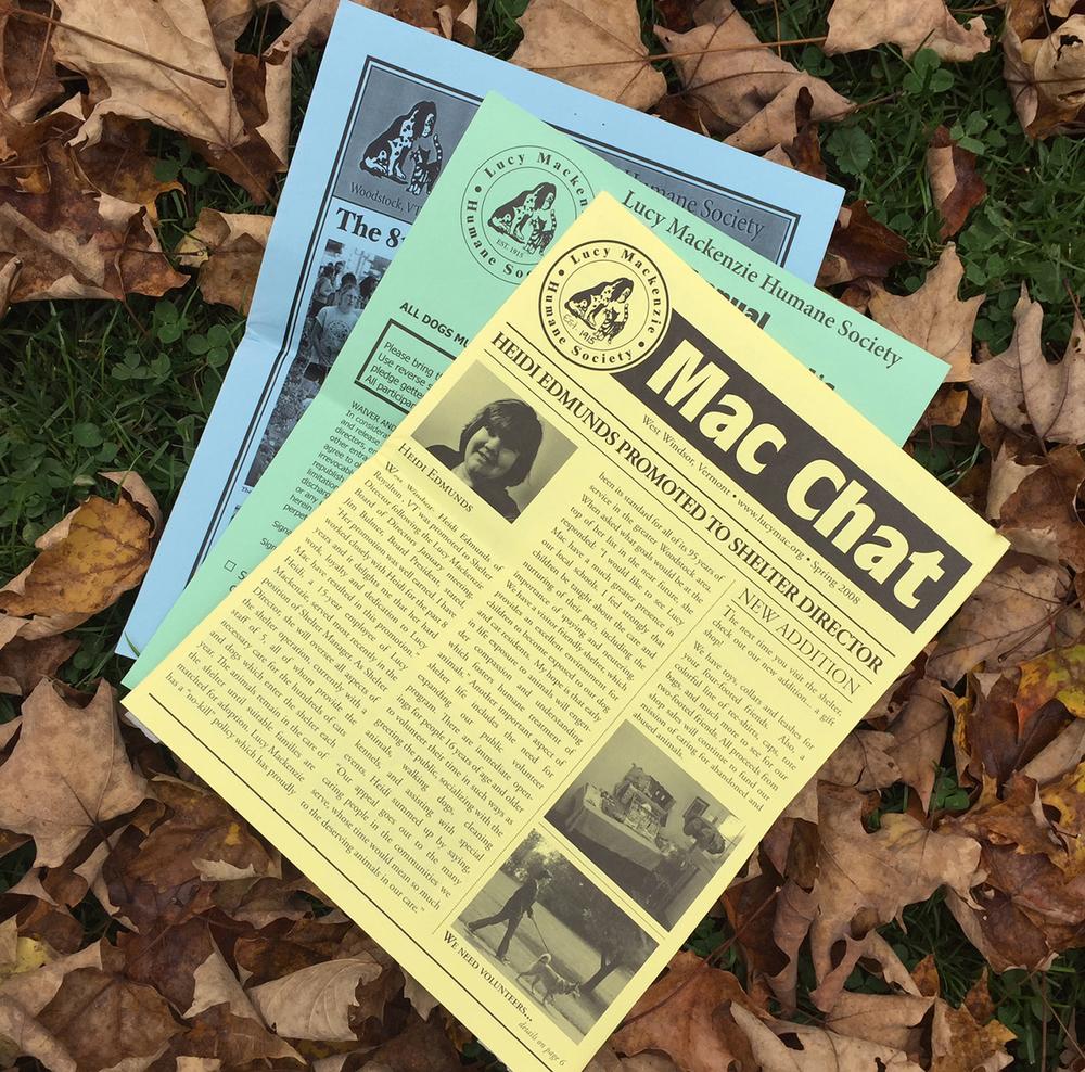 Newsletter Design for Lucy Mackenzie Humane Society
