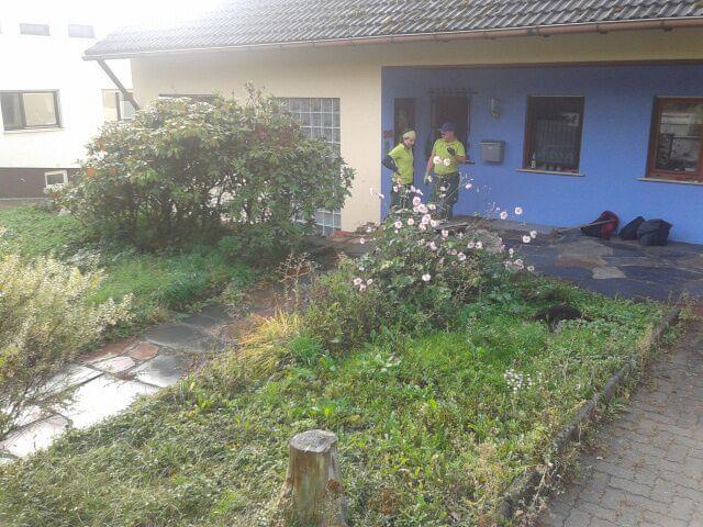Der Garten in Walkersbrunn vor dem Baubeginn