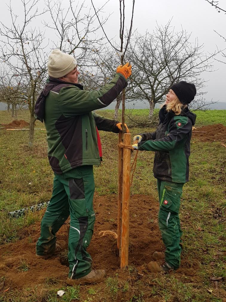 Bogdan und Miriam beim Baumpflanzen