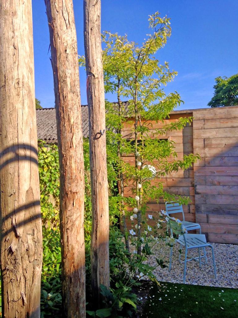 Siebers-Tuinprojecten-leeftuin-robiniahout-palen.jpg