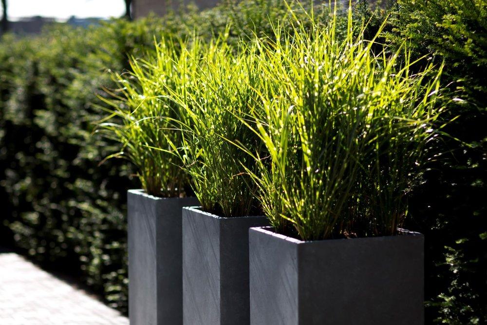 Siebers-Tuinprojecten-dorpstuin-betonlook-potten.jpg