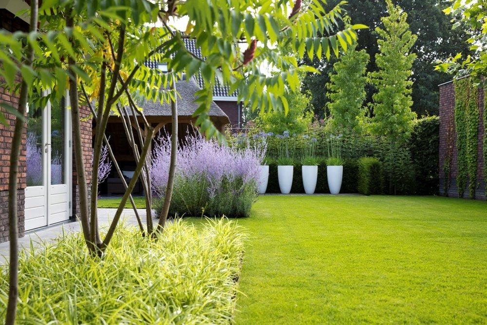 Siebers-Tuinprojecten-rustieke-weelde-tuin-rhus-carex-gazon-polyester-potten.jpg