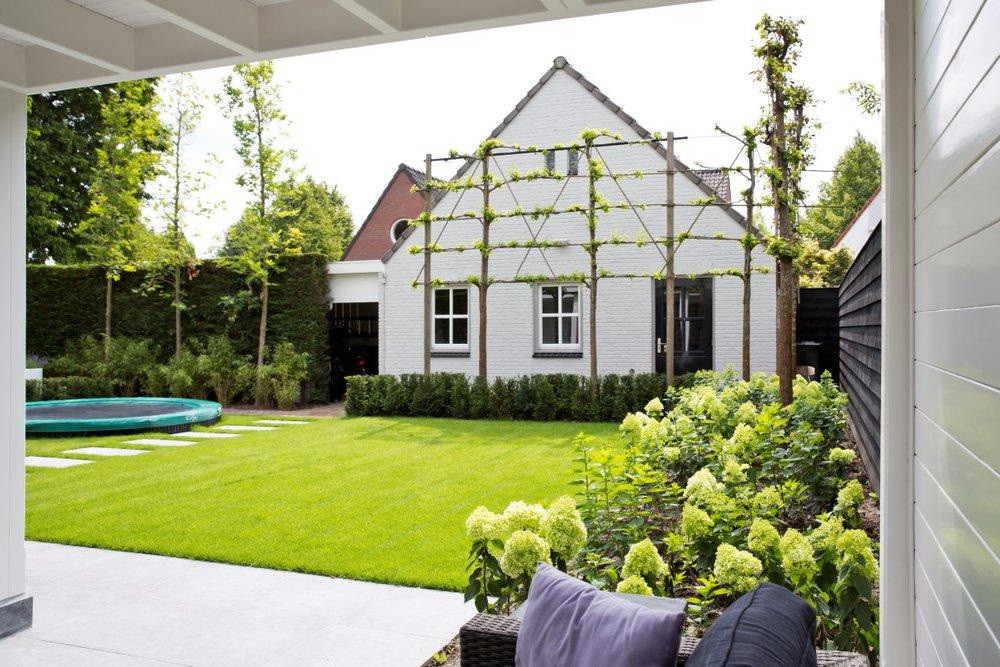 Siebers-tuinprojecten-leibomen-hydrangea-hortensia.jpg