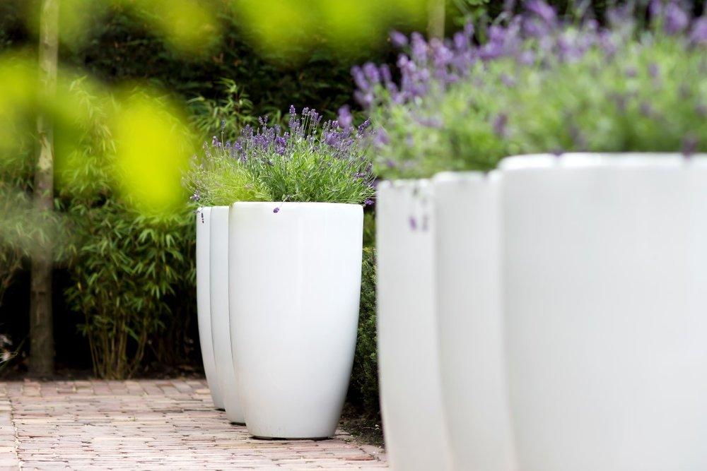 Siebers-tuinprojecten-polyester-potten-terras-lavendel.jpg