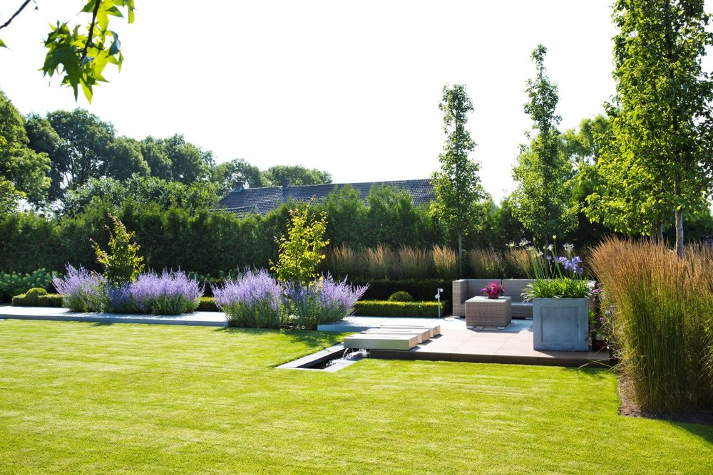 Siebers-tuinprojecten-landelijk-strak-liquidambar-gazon-molinia.jpg