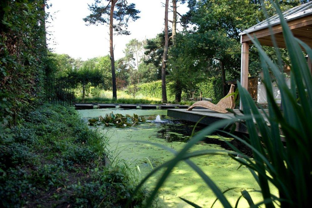 Siebers-Tuinprojecten-Tuin-Hovenier-natuurlijke-tuin-vijver-ligstoel-bloemweide.jpg