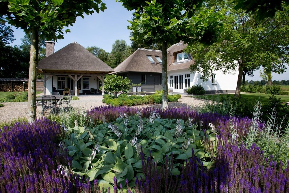 Siebers-Tuinprojecten-Tuin-Hovenier-Boerderij-Salvia-Hosta-Buxuswolk-strakkke-vijver-dichtgegroeide-border-.jpg