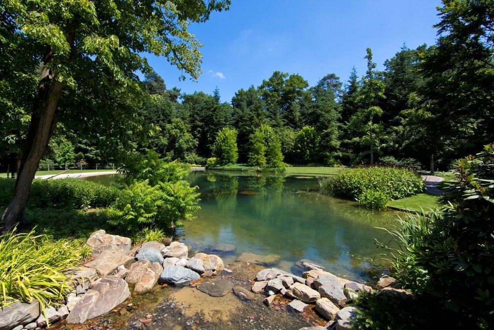siebers-tuinprojecten-leemvijver-waterval.jpg