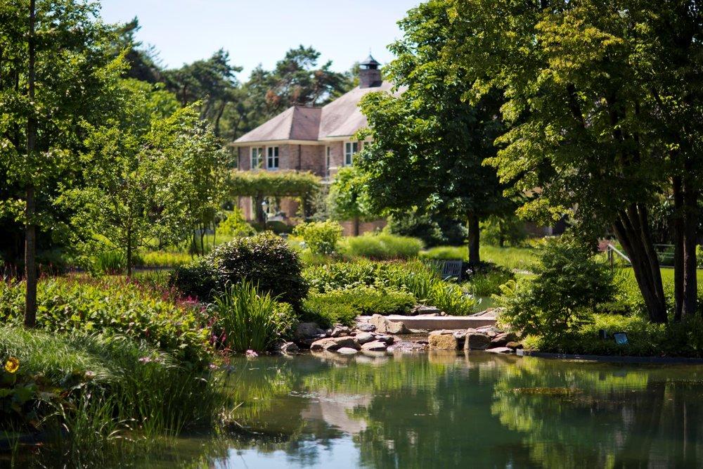 siebers-tuinprojecten-parktuin-doorzicht.jpg