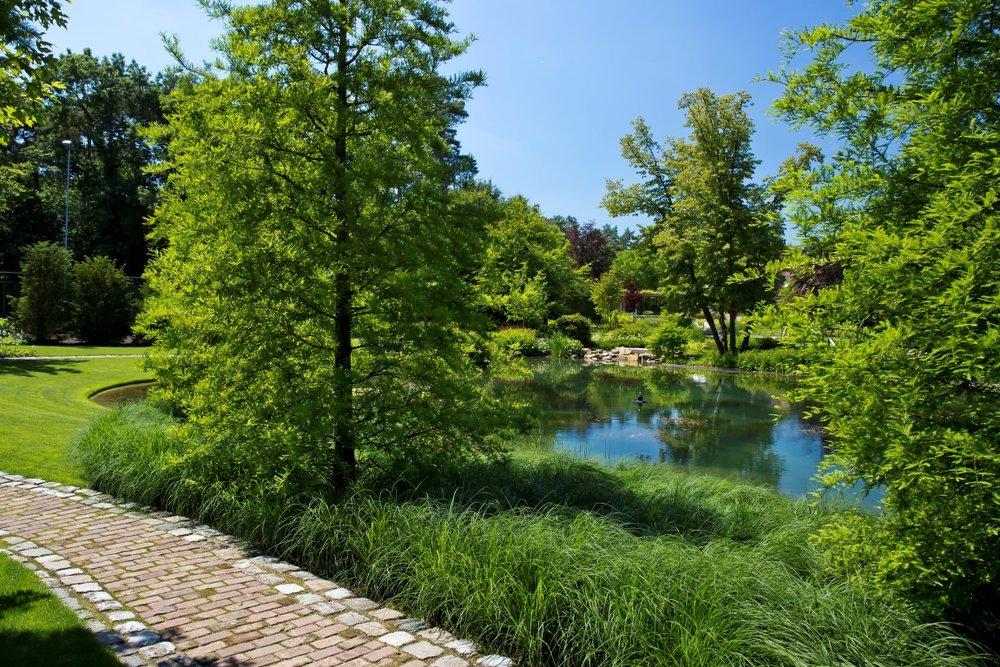 siebers-tuinprojecten-parktuin.jpg