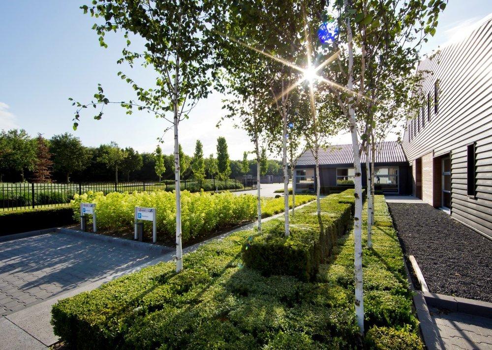 siebers-tuinprojecten-bedrijfsentree-berken.jpg