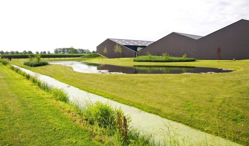 siebers-tuinprojecten-landelijke-parktuin.jpg