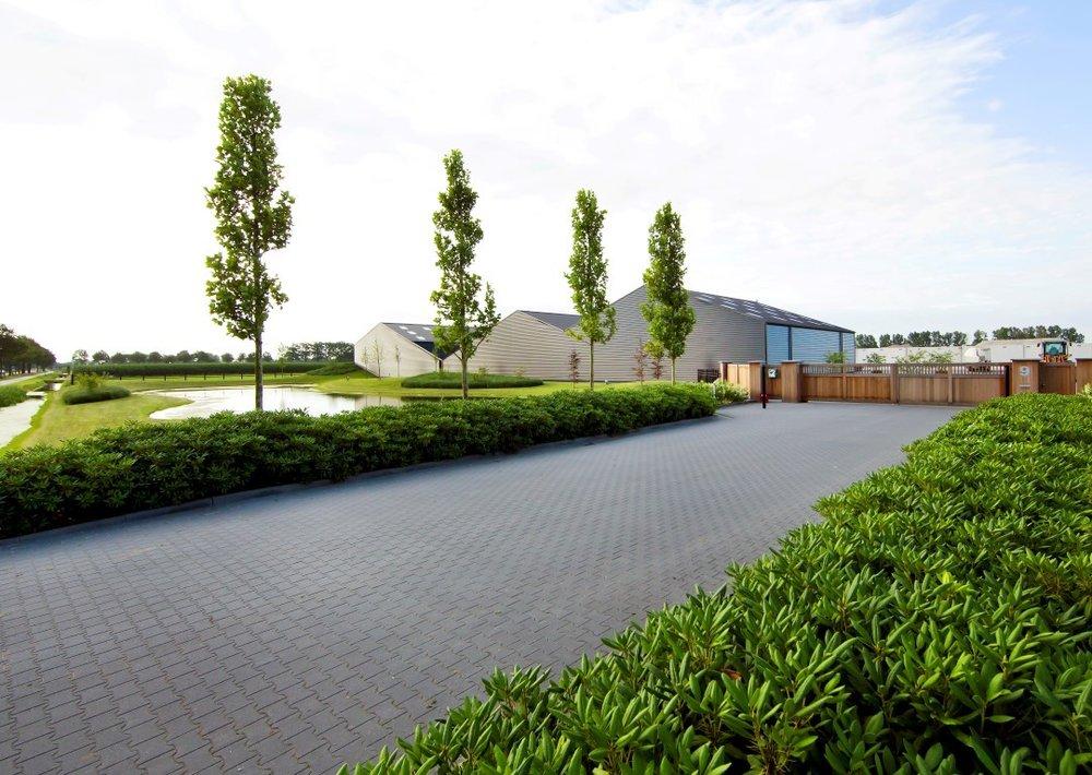 siebers-tuinprojecten-eenvoud-chique.jpg