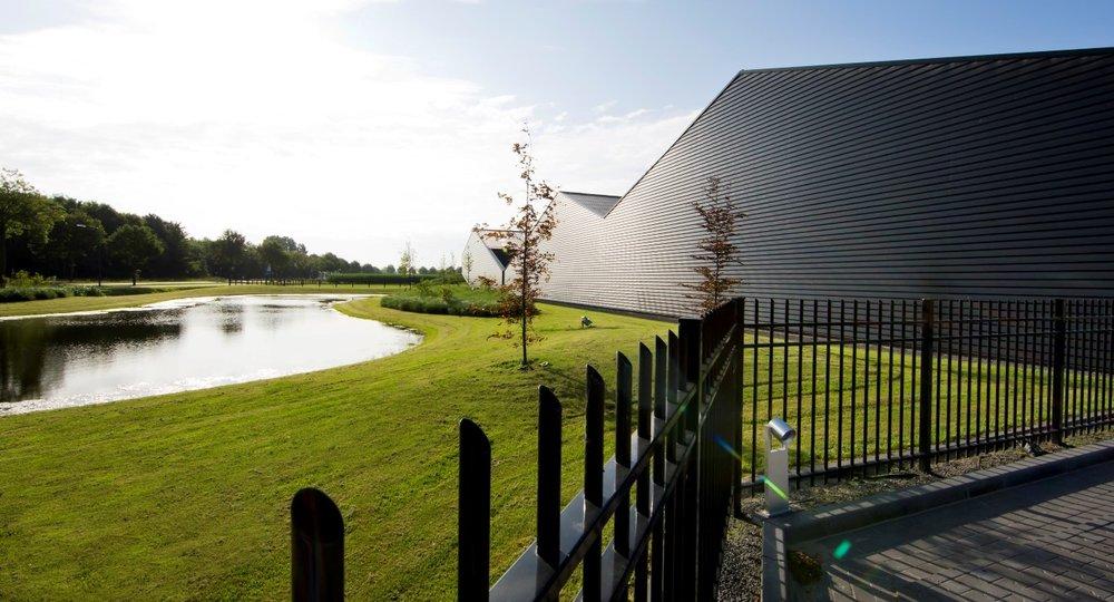 siebers-tuinprojecten-gazon-bedrijfstuin.jpg