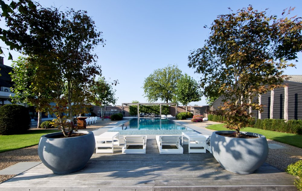 Siebers-Tuinprojecten-Elzen-Zwembad-Overloop-Infinity-acer-palmatum.jpg