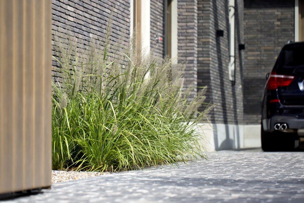 siebers-tuinprojecten-stadstuin-eindhoven