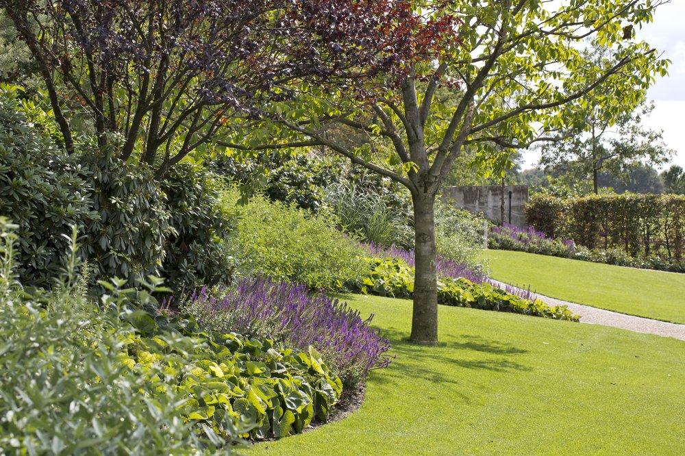 siebers-tuinprojecten-parktuin-erp-juglans-regia-prunus.jpg