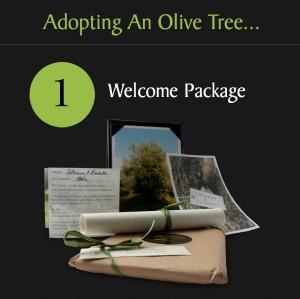 Tre Olive Adopt 3.jpg