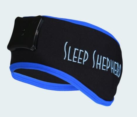 sleep shepherd.jpeg