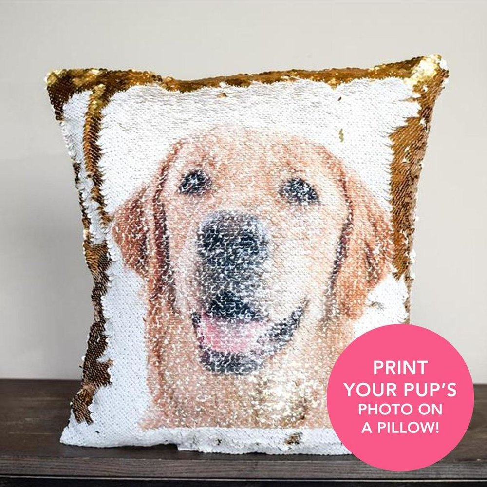 Pup_Pillow_Photo_1048x.jpg
