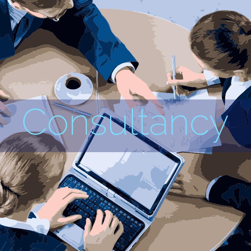 Consultancy Icon.jpg