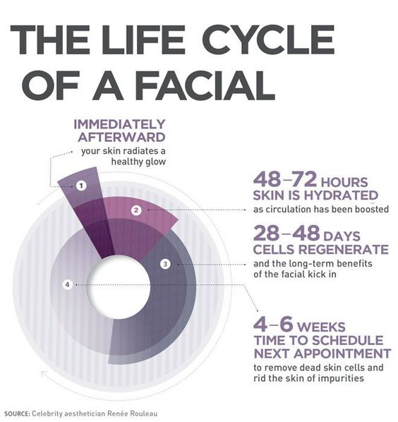 Life cycle of a facial.jpg